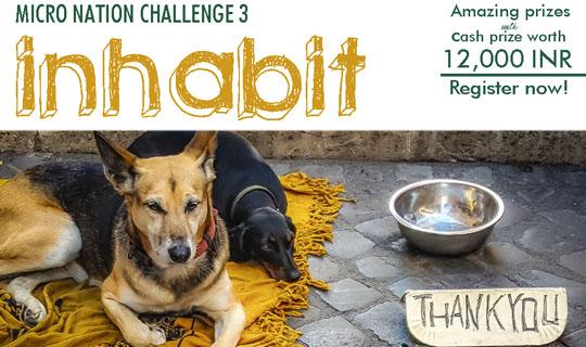 第三届微型国度设计挑战赛:流浪动物庇护设施